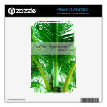 2014 Palm Tree iPhone 2G/3G/3GS skin Decals For iPhone 3G