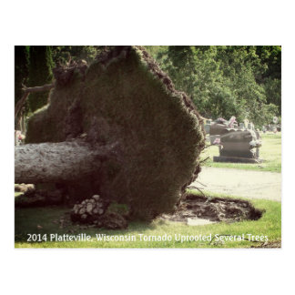 2014 Platteville, Tornadoes Memorabilia Postcard
