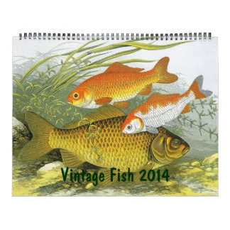 2014 Vintage Fish in Oceans and Rivers Calendar