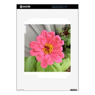 2015-06-22 17.51.11.jpg calcomanías para iPad 2