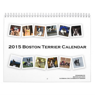 2015 Boston Terrier Calendar