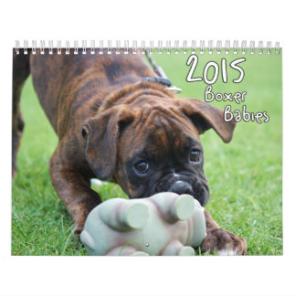 2015 Boxer Babies Calendar