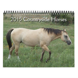2015 Calendar Countryside Horses