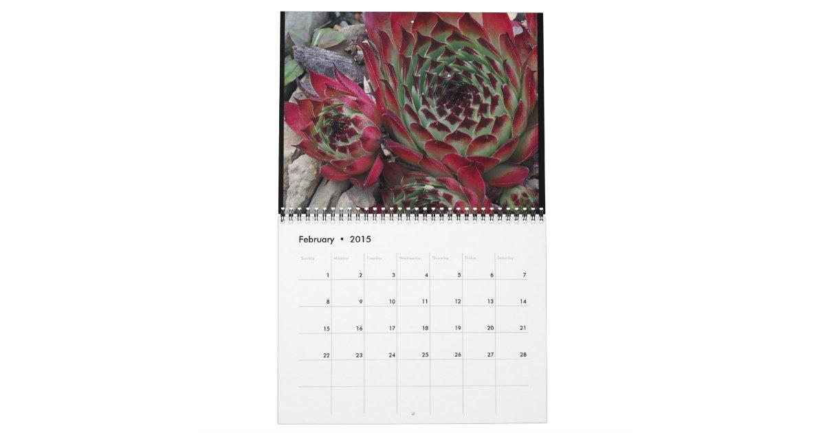 2015 Dave 39 S Garden Calendar Zazzle