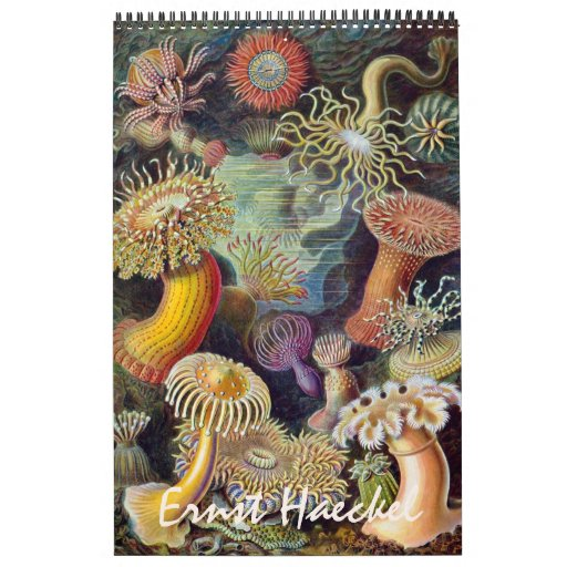 2015 Ernst Haeckel Art, Biology and Botany Wall Calendar
