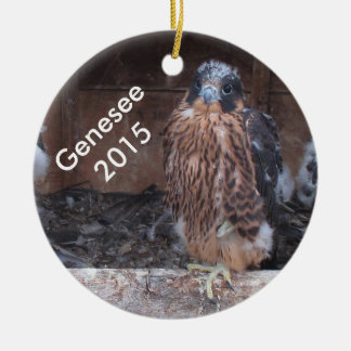 2015 Genesee Ornament