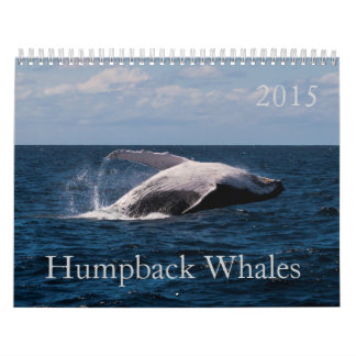 2015 Humpback Whale Calendar