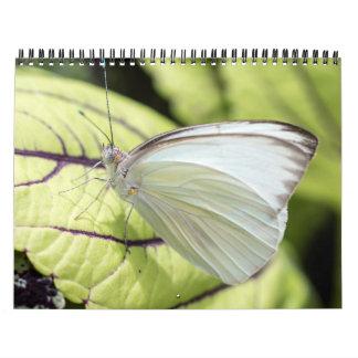 2015 In Butterflies Calendar