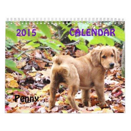 2015 Penny Calendar