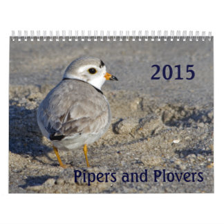 2015 Pipers and Plovers Monthly Calendar