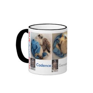 2015 Rfalconcam Bucket Pics Ringer Coffee Mug