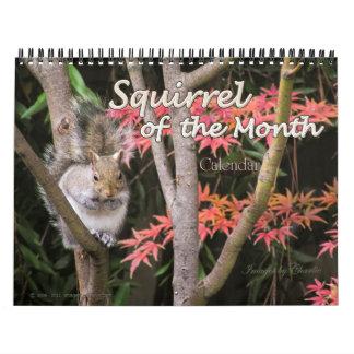 2015 Squirrel Wall Calendar