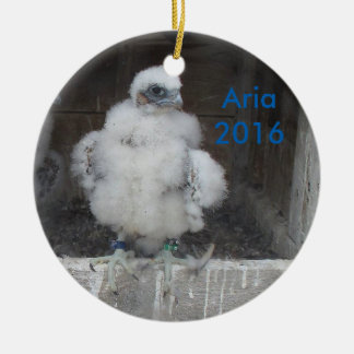 2016 Aria Ornament