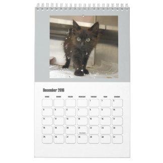 2016 Black Cats Calendar