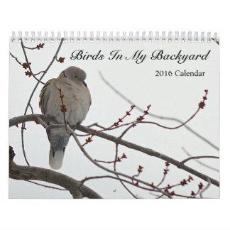 2016 Calendar Birds In My Backyard