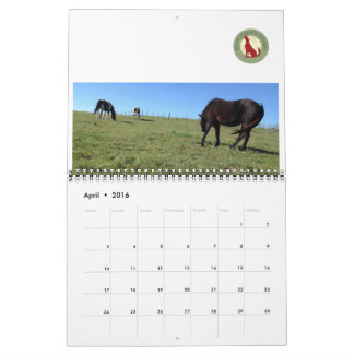 2016 Calendar ~ Red Wolf Ranch ~ Horses