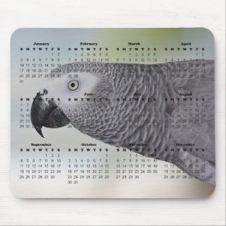 2016 Calendar with Gorgeous African Grey Parrot Mouse Pad