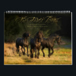 "2016 Forest Boyz Calendar<br><div class=""desc"">Meike,  Menno &amp; Saphire are Friesian stallions that live free in a bachelor herd in the forests of the northern California coast. This calendar is an attempt to share a little glimpse of our lives together.</div>"