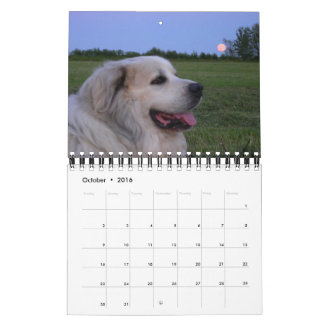 2016 Great Pyrenees Calendar