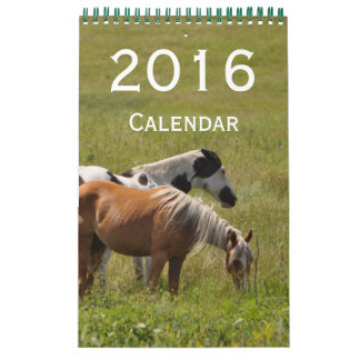 2016 Horse Mini Wall Calendar by Janz