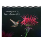2016 Hummingbird Calendar