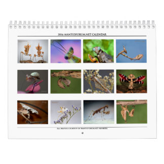 2016 Mantidforum High Resolution Wall Calendar
