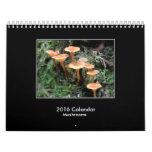 2016 Mushroom Calendar