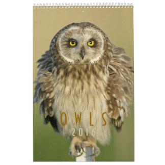 2016 Owls Wall Calendar for Bird Lovers
