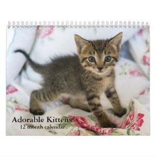 2017 Adorable Kittens Twelve Month Cat Calendar