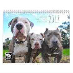 2017 Badrap Barn Dogs Calendar at Zazzle