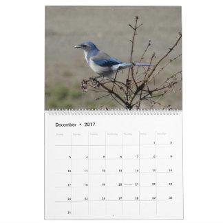 2017  Birds of North America Calendar