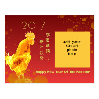 2017 Chinese New Year Custom Photo Greeting Postcard