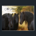"2017 Forest Boyz Calendar<br><div class=""desc"">Meike,  Menno and Saphire,  affectionately known as The Forest Boyz,  are Friesian stallions that live free in a bachelor herd in the forests of the northern California coast. There is nothing like the heart of a stallion,  and this is a rare glimpse into their world.</div>"