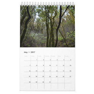 2017 forests of Tenerife calendar