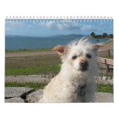 2017 Gwendolyn Calender Calendar at Zazzle
