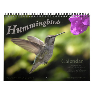2017 Hummingbird Wall Calendar