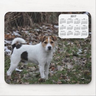 2017 Jack Russell Terrier Calendar by Janz Mouse Pad