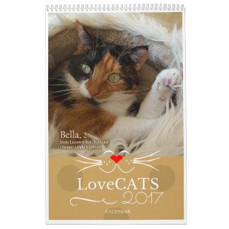 2017 LoveCATS Calendar - Second Edition