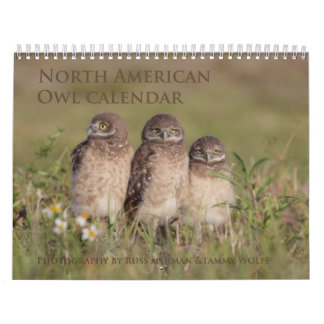 2017 North American Owl Wall Calendar