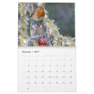 2017 Robin Calendar
