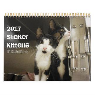 2017 Shelter Kittens Calendar