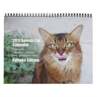 2017 Somali Cat featuring Summer Samba (Outtakes) Calendar