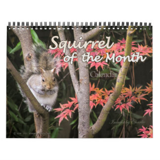 2017 Squirrel Wall Calendar