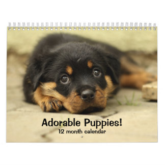 2018 Adorable Puppies Twelve Month Dog Calendar