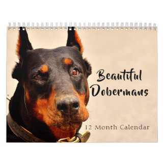 2018 Beautiful Dobermans Calendar