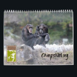 "2018 Calendar for Chimpanzee Sanctuary Northwest<br><div class=""desc"">Gorgeous photos of the seven chimpanzees at Chimpanzee Sanctuary Northwest to enjoy all year! Major holidays and of course the chimpanzees&#39; birthdays are featured dates.</div>"