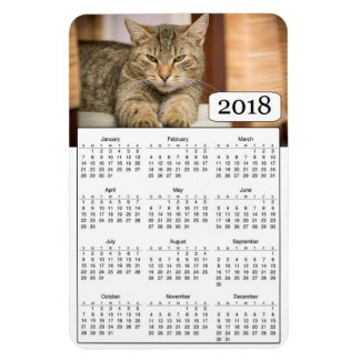 2018 Calendar Personalized Cat Photo Magnet
