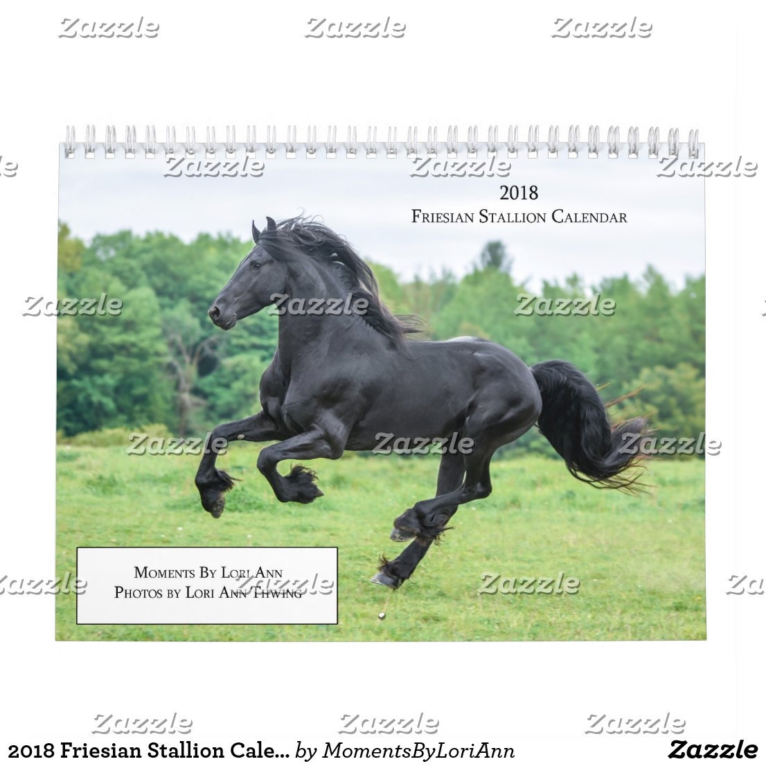 2018 Friesian Stallion Calendar