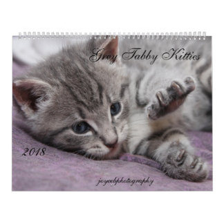 2018 GRAY TABBY KITTIES CALENDAR
