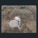 """2018 Gwendolyn Calendar<br><div class=""""desc"""">The fourth,  and sadly final,  annual calendar featuring our beloved Gwendolyn.  Gwendolyn passed away November 19th,  2017 at the age of 14 years,  10 months. Gwen had a rich life of hiking,  chasing her little ball,  friendship and love.  We&#39;ll never forget her.</div>"""